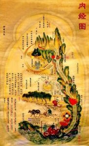 Chinese geneeskundige ontwikkeling begint met een diagram